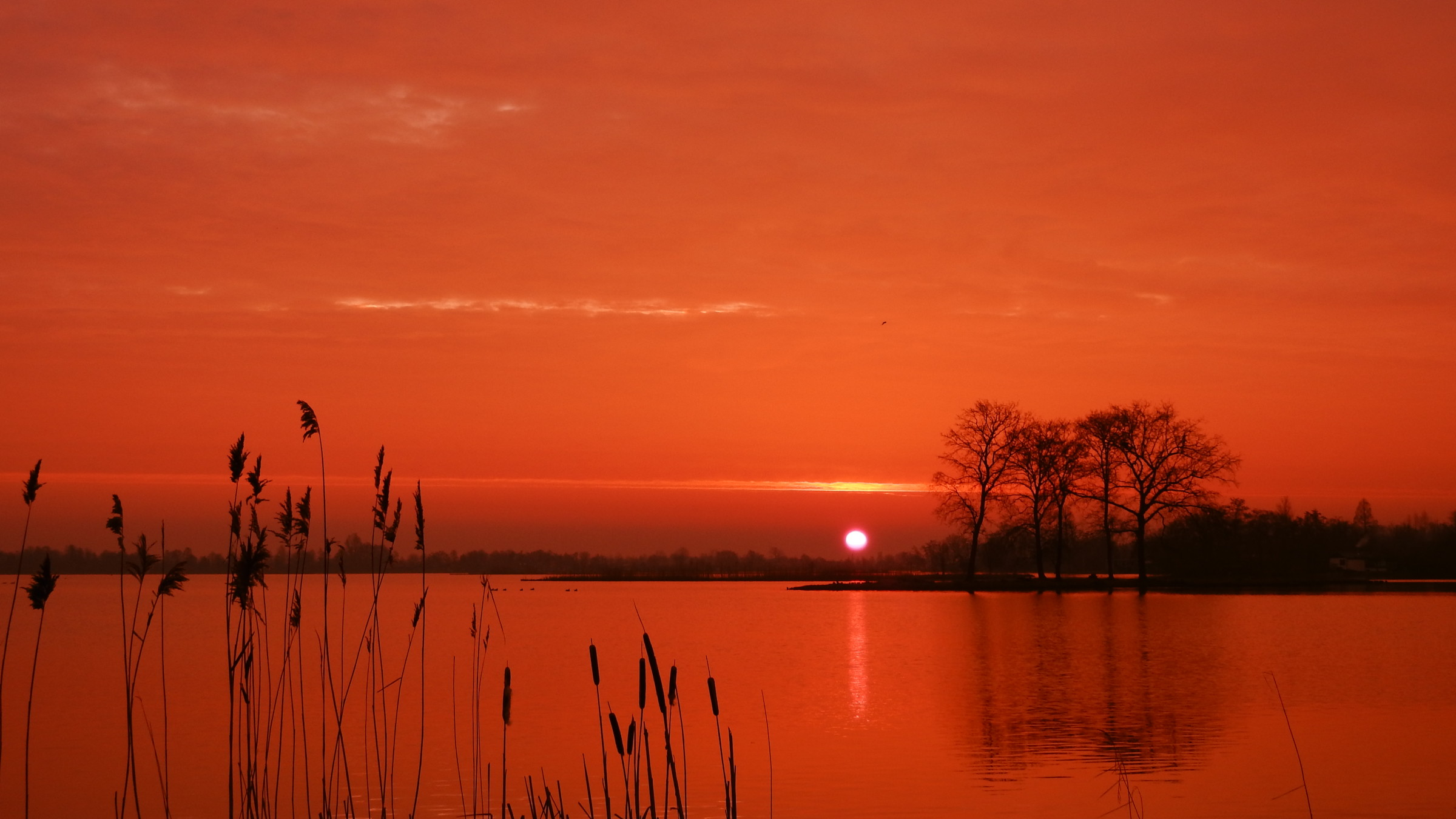Weerwoord koude zonsopkomst met warme kleuren!